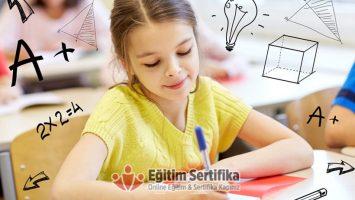 Objektif Testler Sertifika Programı