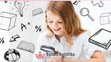 Online WİSC-R Zeka Testi Sertifika Programı