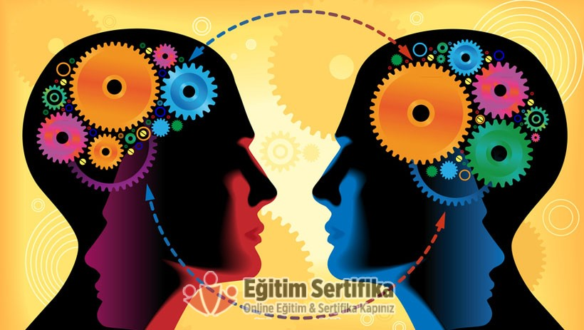 Psikoloji Lisans Programı