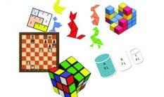 Akıl ve Zeka Oyunları Ürünleri
