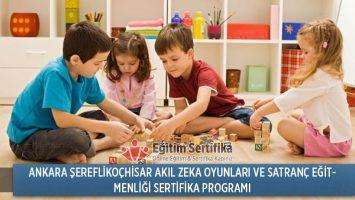 Akıl Zeka Oyunları ve Satranç Eğitmenliği Sertifika Programı Ankara Şereflikoçhisar
