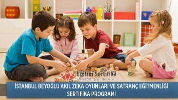 İstanbul Beyoğlu Akıl Zeka Oyunları ve Satranç Eğitmenliği Sertifika Programı