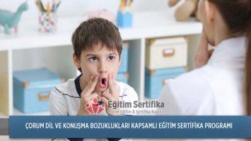 Dil ve Konuşma Bozuklukları Kapsamlı Eğitim Sertifika Programı Çorum