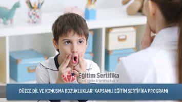 Dil ve Konuşma Bozuklukları Kapsamlı Eğitim Sertifika Programı Düzce