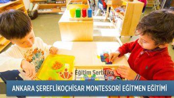 Montessori Eğitmen Eğitimi Ankara Şereflikoçhisar