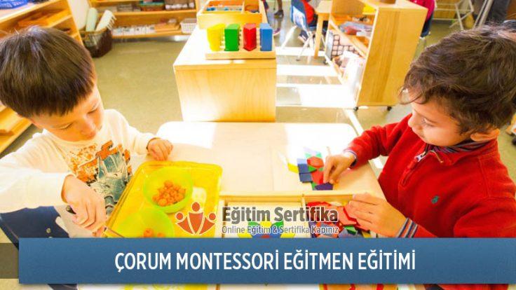 Montessori Eğitmen Eğitimi Çorum